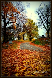 Woodland Cemetary in the Fall Jamie Drake ©
