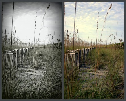 Cocoa Beach Jamie Drake ©